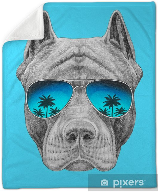 Portrait of Pit Bull with sunglasses. Hand-drawn illustration. Plush Blanket - Animals