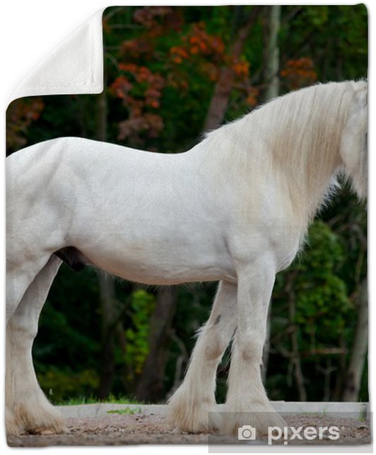 White Shire Horse Standing Near The Spring Forest Plush Blanket