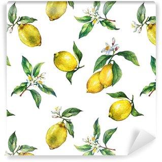 Vinil Duvar Kağıdı Yeşil yaprak ve çiçeklerle taze narenciye limonlarının dallarının kesintisiz modeli. Beyaz zemin üzerinde elle çizilmiş suluboya resim.