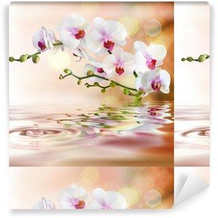 Weiße Orchideen auf dem Wasser mit Tropfen