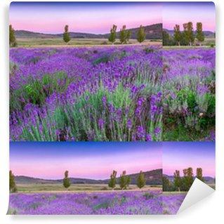 Sunset over a summer lavender field Vinyl custom-made wallpaper