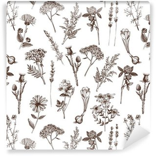 vector seamless pattern with ink hand drawn medicinal herbs sketch Vinyl Custom-made Wallpaper