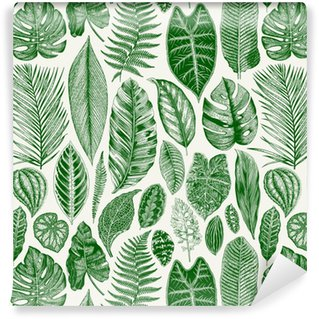 Vector seamless vintage floral pattern. Exotic leaves. Botanical classic illustration. Green Vinyl Custom-made Wallpaper