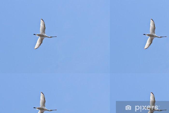 Carta da Parati a Motivi in Vinile Airone bianco maggiore - Uccelli
