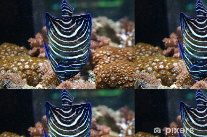 Papel Pintado Estándar Ange bleu poisson - Animales marinos