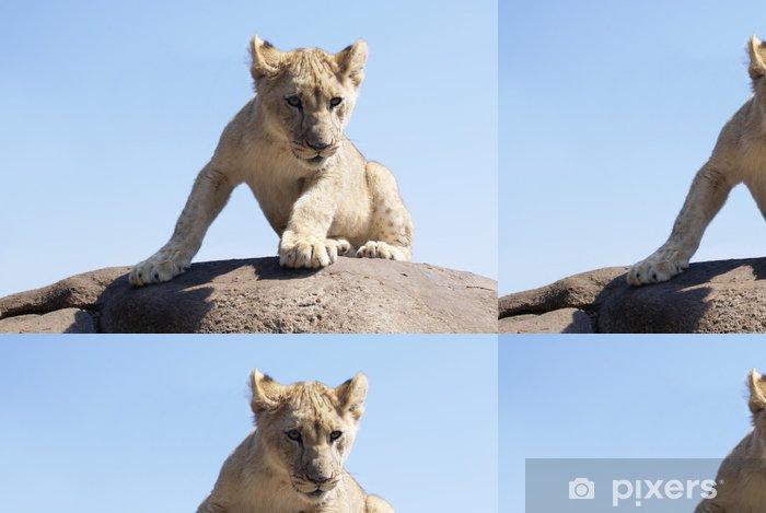 Papel Pintado Estándar Cachorro de león en una roca - Temas