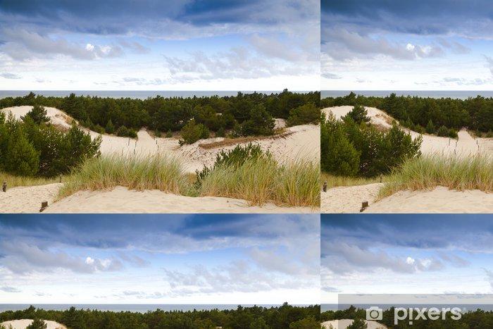Papel Pintado Estándar Las dunas de arena en la costa del mar Báltico en la mañana - Deportes de exterior