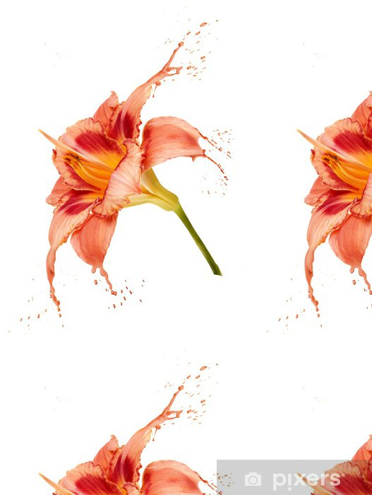Papel Pintado Estándar Naranja salpicaduras de flores - Flores