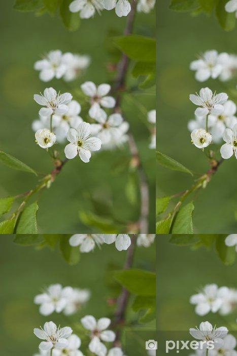 Papier peint à motifs vinyle Apple floraison de printemps. - Fleurs