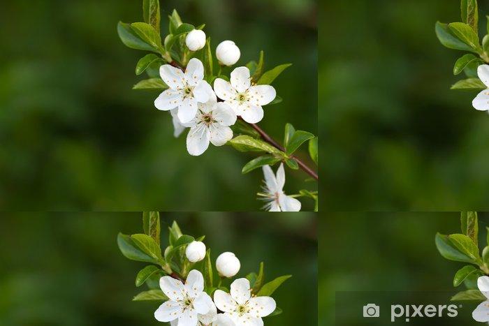 Papier peint à motifs vinyle Arbre avec de belles fleurs blanches - Saisons