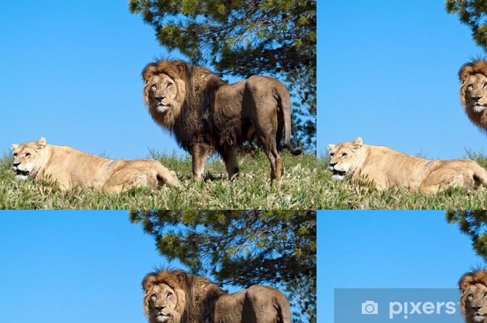 e4ae13d290dd8 Papier peint à motifs Le Roi Lion • Pixers® - Nous vivons pour changer