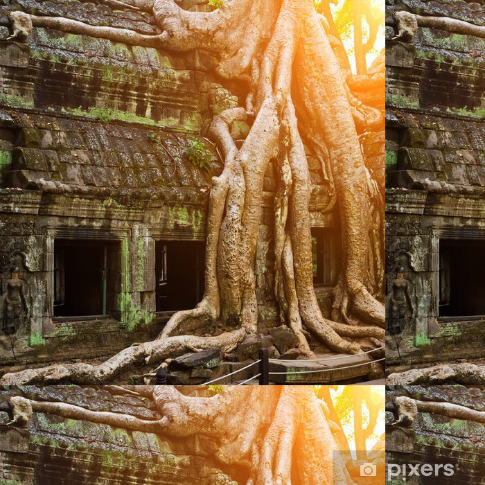 Vinyltapet Giant träd täcker Ta Prom tempel, Siem Reap, Kambodja - Monument