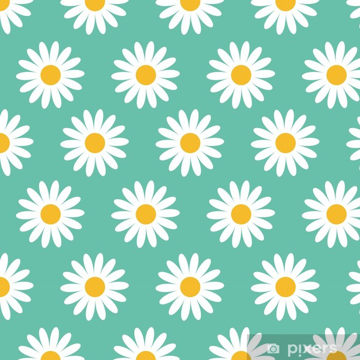 Cute Camomile Plant Collection Seamless Pattern White Daisy Chamomile Flower Icon Growing Concept