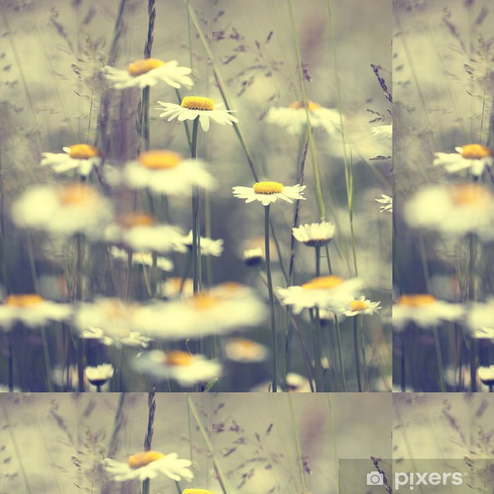 Vintage Daisy Flowers Vinyl Wallpaper