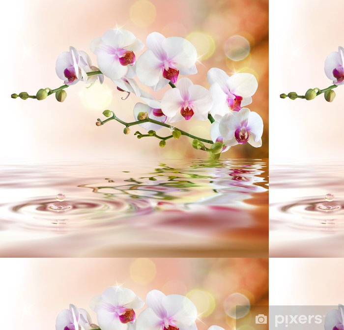 White Orchids On Water With Drop Vinyl Wallpaper
