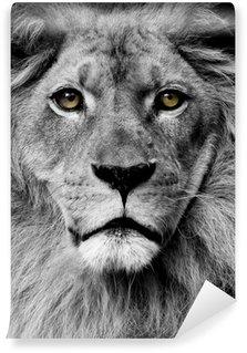 Abwaschbare Fototapete Lion Augen