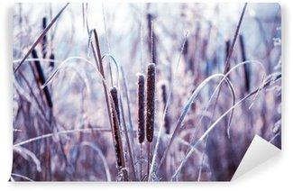 Abwaschbare Fototapete Pflanzen, die mit Raureif bedeckt