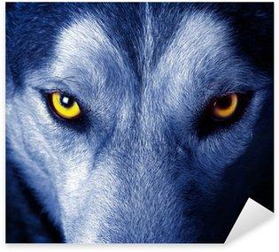 Pixerstick per Tutte le Superfici Begli occhi di un lupo selvatico.