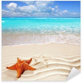 Pixerstick per Tutte le Superfici Caraibica tropicale spiaggia di sabbia bianca conchiglia stella marina