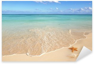 Pixerstick per Tutte le Superfici Conchiglie di mare stella di mare tropicale sabbia turchese dei Caraibi