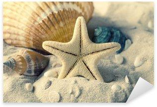 Pixerstick per Tutte le Superfici Conchiglie e stelle marine sulla sabbia