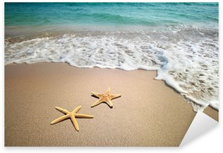 Pixerstick per Tutte le Superfici Due stelle marine su una spiaggia