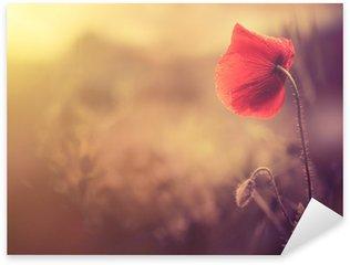Pixerstick per Tutte le Superfici Fiore selvatico papavero