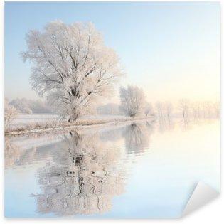 Pixerstick per Tutte le Superfici Inverno, albero, Frosty contro un cielo blu con la riflessione in acqua