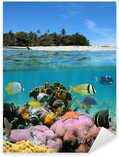Pixerstick per Tutte le Superfici La spiaggia e la barriera corallina
