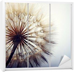 Adesivo per Guardaroba big dandelion on a blue background