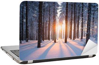 Adesivo per Laptop Tramonto nel bosco in periodo invernale