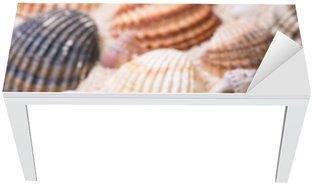 Adesivo per Tavolo & Scrivania Conchiglie con sabbia corallina