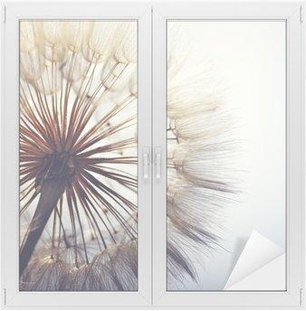 Adesivo per Vetri & Finestre big dandelion on a blue background