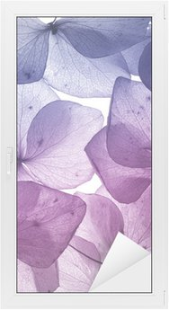 Adesivo per Vetri & Finestre Colorato fiore petalo closeup