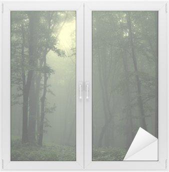 Adesivo per Vetri & Finestre Verde bosco dopo la pioggia