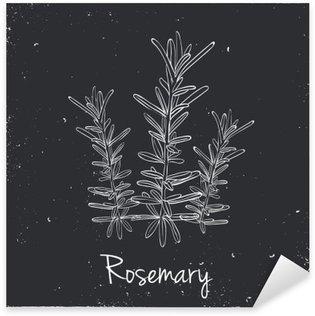 Adesivo Pixerstick Rosemary erbe e spezie.