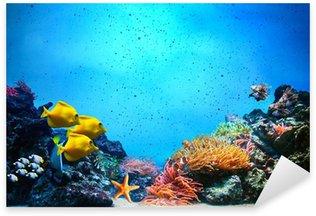 Pixerstick per Tutte le Superfici Scena subacquea. Barriera corallina, gruppi di pesci in acque dell'oceano chiara