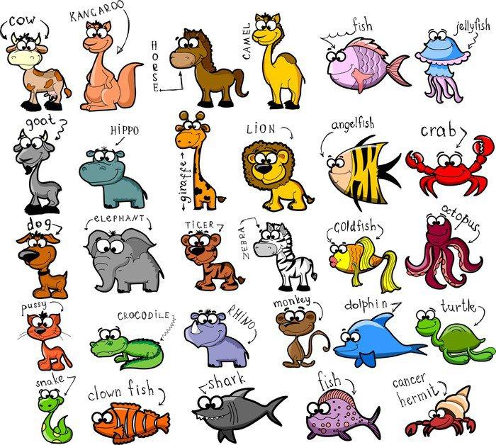 Pixerstick para Todas Superfícies Большой набор мультфильмов животных и рыб - Mamíferos