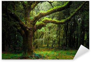 Pixerstick para Todas Superfícies bosco