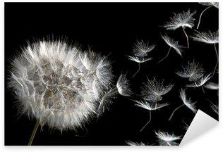 Pixerstick para Todas Superfícies dandelion blowing seeds