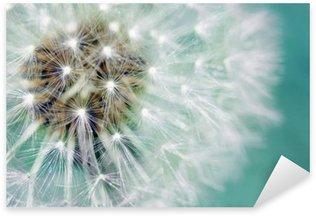 Pixerstick para Todas Superfícies Dandelion fluffy seeds over blue