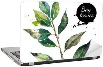 Adesivo de Notebook Cozinha ervas e especiarias banner. ilustração do vetor. aquarela