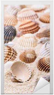 Adesivo para Porta Sea shells with coral sand