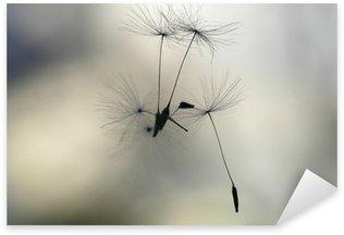 Pixerstick para Todas Superfícies seeds in the air