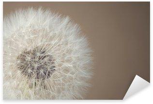 Pixerstick para Todas Superfícies soft dandelion