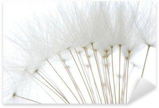 Pixerstick para Todas Superfícies soft white dandelion seeds