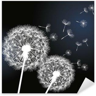 Pixerstick para Todas Superfícies Two flowers dandelions on black background