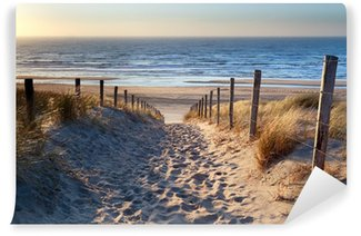 Afwasbaar Fotobehang Pad naar Noordzee strand in gouden zon