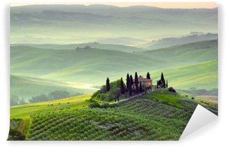 Afwasbaar Fotobehang Prachtig landschap in Toscane