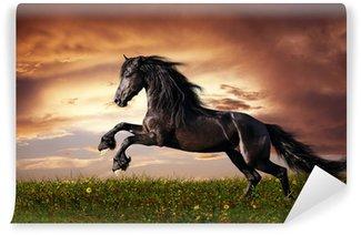 Afwasbaar Fotobehang Zwarte Friese paarden in galop